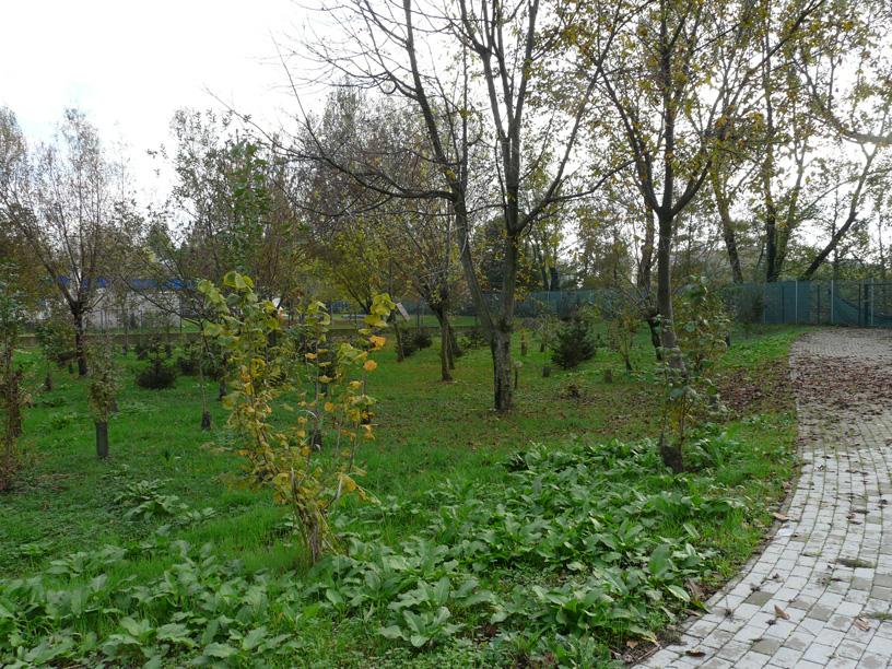 Parco delle Fate Buccinasco