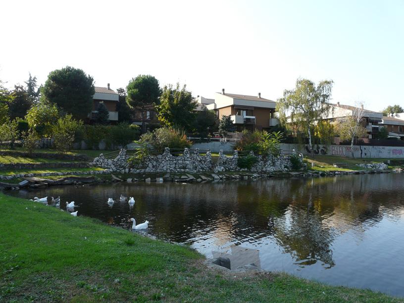 Buccinasco itinerari tra acqua e verde for Acqua verde laghetto
